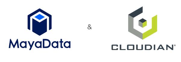 Webinar Joint logo